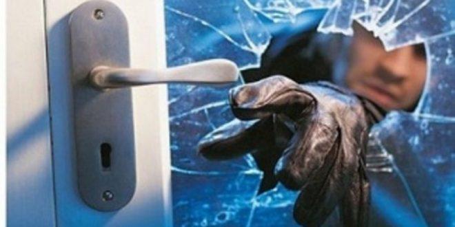 800 raste të vjedhjeve brenda dy muajve